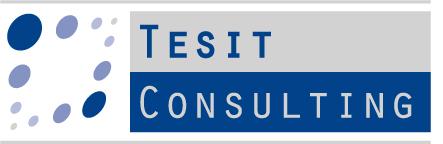 Società di Consulenza Tesit Consulting
